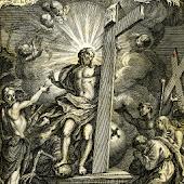 Luther-Bibel 1545 ● PRO