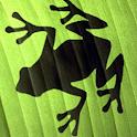Super Frog Online icon