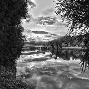 Mirik by Pritam Saha - Landscapes Travel ( reflection, monochrome, landscape, photo, pheonix )