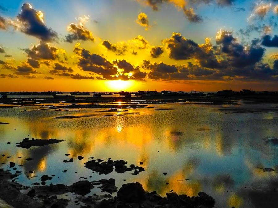 by Yasser El-Rasoul - Landscapes Sunsets & Sunrises ( water, red sea, shalateen, sunrise, egypt )