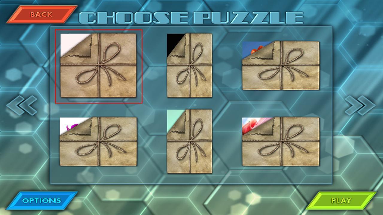 HexLogic - Flowers- screenshot