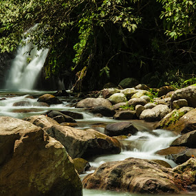 Rocky Waterfall by Jimmy Fang - Landscapes Forests ( jungle, trekking, waterfall, forest, landscape, rocks )
