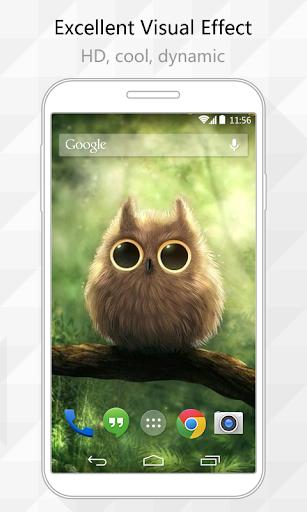 Lovely Owl Live Wallpaper