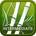 Human Japanese Int. Lite icon