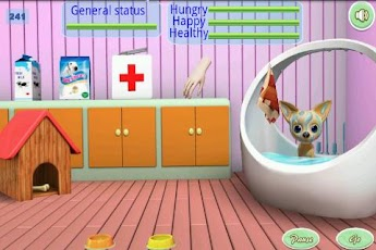 Pet Daycare Android Casual