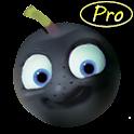 EyeBerry Pro logo