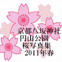 KyotoYasakaSakuraPhoto2011 logo