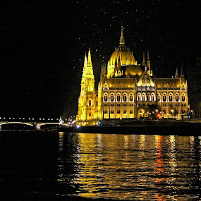 Parliament at Night by Tony Murtagh - City,  Street & Park  Night ( water, hungary, budapest, reflections, danube, nightscape, city, urban, night photography, lifestyle, bridge, margaret bridge, river, , city at night, street at night, park at night, nightlife, night life, nighttime in the city )