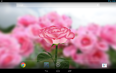 3D Rose Live Wallpaper - Android Apps on Google Play