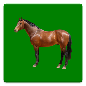 Download Equine Fluid Therapy APK