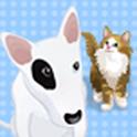 강아지 고양이 탐구생활 icon