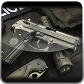 FBI Firearms HD Theme