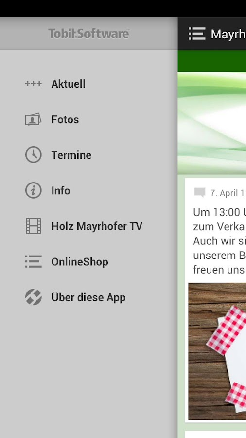Holz Mayrhofer GmbH - screenshot