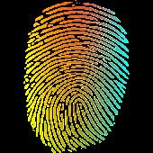 LilFinger: easy fingerpaint
