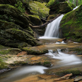 Mill Creek Falls by Tim Devine - Landscapes Waterscapes ( lock 12, mill creek falls, holtwood, waterfall, york county, pennsylvania )