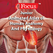 Anatomy Atlas - Animated