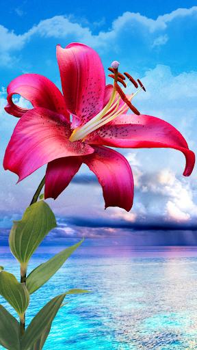 花。マジック·タッチの壁紙