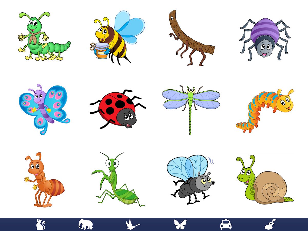 video touch   bugs amp insects   android apps on google play