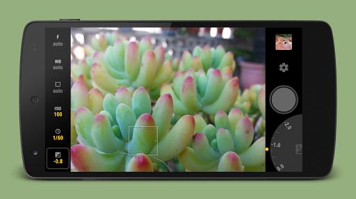 Manual Camera screenshot