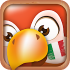 Learn Italian Phrases  Italian Translator icon
