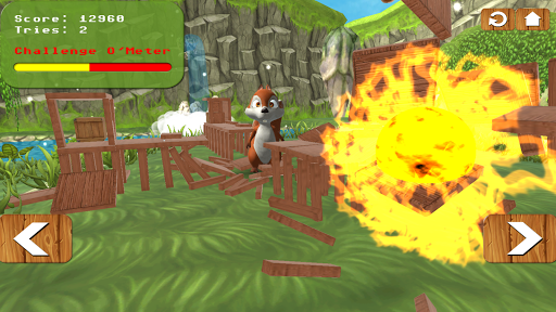 Squirrel Bricks Game: Smash it
