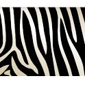 Zebra Theme GO Launcher EX icon