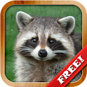 Animals for Kids - Flashcards icon