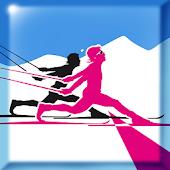 Superb Skiing