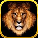 King Slots icon