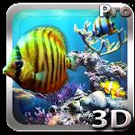 Tropical Ocean 3D LWP v1.0