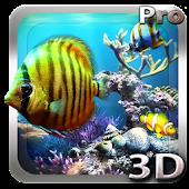 Tropical Ocean 3D LWP