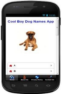 SUPERB BOY DOG NAMES - náhled