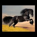 Jeu sur l'équitation icon
