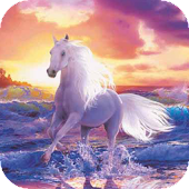 Horse by the sea live wp