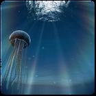 Jellyfish 3D LiveWallpaper icon