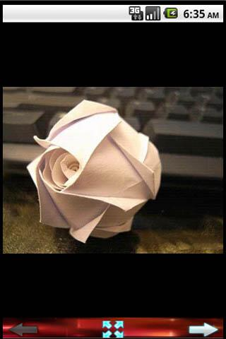 How to Fold Rose - screenshot