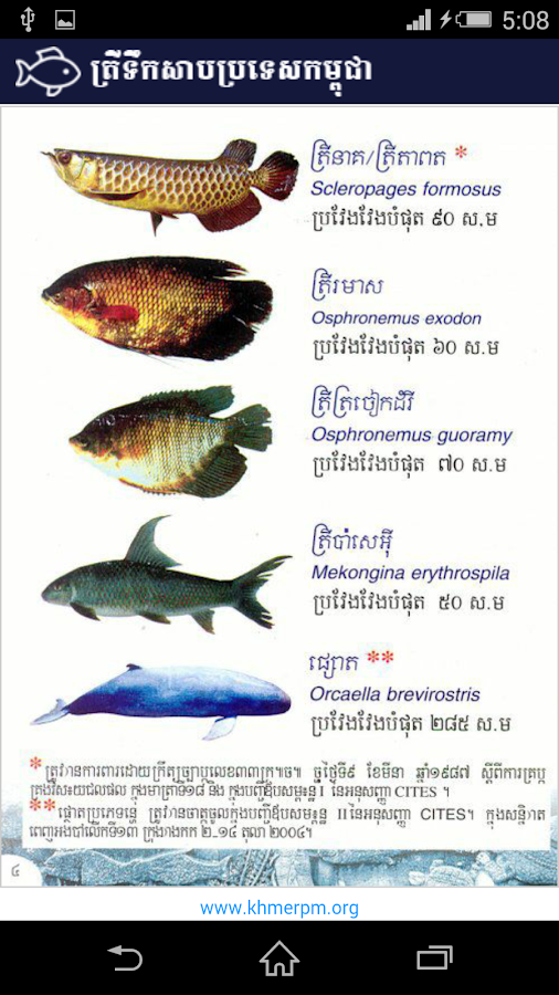 Fish names 2016 hot fashionable personalized name for Name of fish