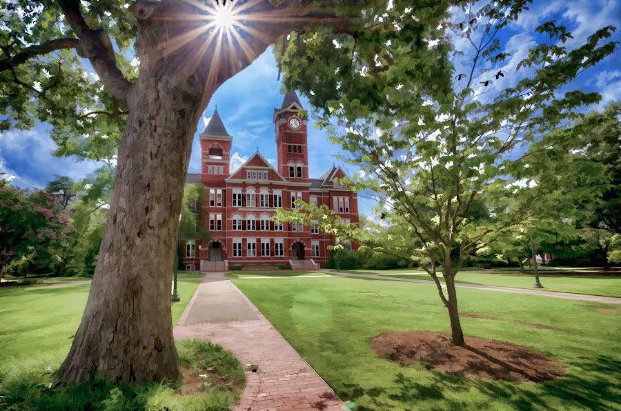 Auburn University by RomanDA Photography - Buildings & Architecture Public & Historical ( university, auburn, nature, buildings, alabama, campus )