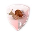 VPN Over DNS  Tunnel : SlowDNS icon