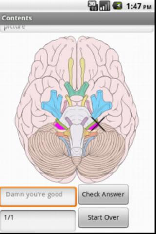 Cranial Nerves - screenshot