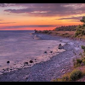 Lofta Beach by Jörgen Tannerstedt - Landscapes Sunsets & Sunrises ( sandvik, sweden, kalmar, tree, djupvik, sunset, stone house, ocean, beach, lofta, öland )