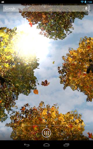 【免費個人化App】Falling Leaves Free Wallpaper-APP點子
