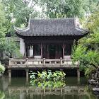China 1 FREE icon