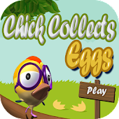 Chick Collects Eggs