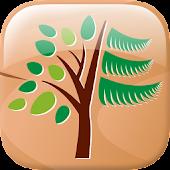 Les poznání