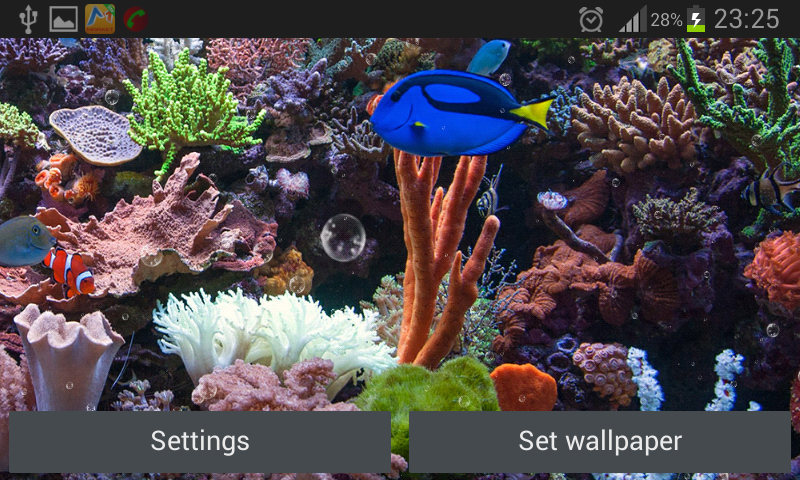 Best aquarium and fish live wallpapers for android hd wallpapers