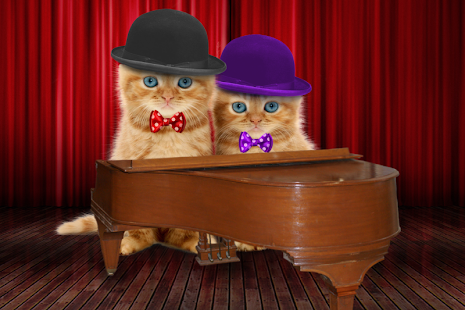 Mluvící kočky - náhled