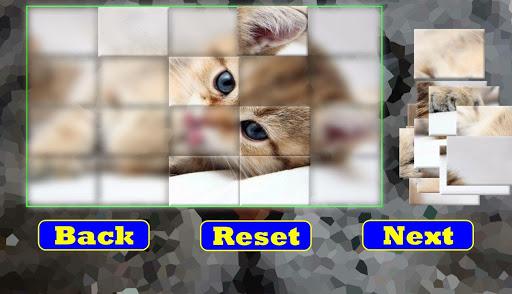 解謎必備免費app推薦|パズル:子猫線上免付費app下載|3C達人阿輝的APP