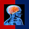 Anatomy and Physiology Quiz icon
