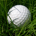 Speed Golf logo